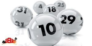 Lotto Dominator – How it works